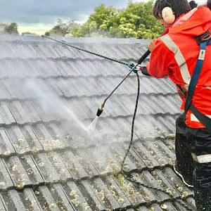 Moss, Mould, Lichen Treatment and Roof Cleaning